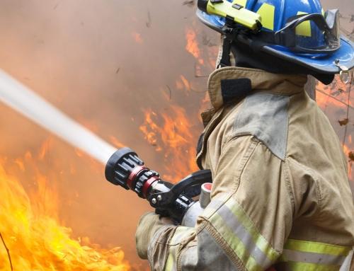 Ordinanza incendi boschivi 2017