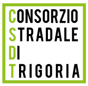 CSDT Logo
